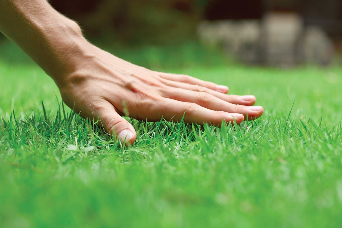 Your Step By Step Guide on Laying Instant Turf