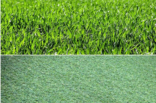 Real Vs Synthetic Turf - The Battle Is On