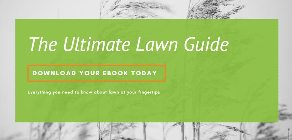 The Ultimate Lawn Guide