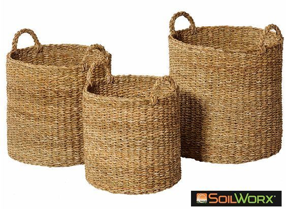 Chandni Basket