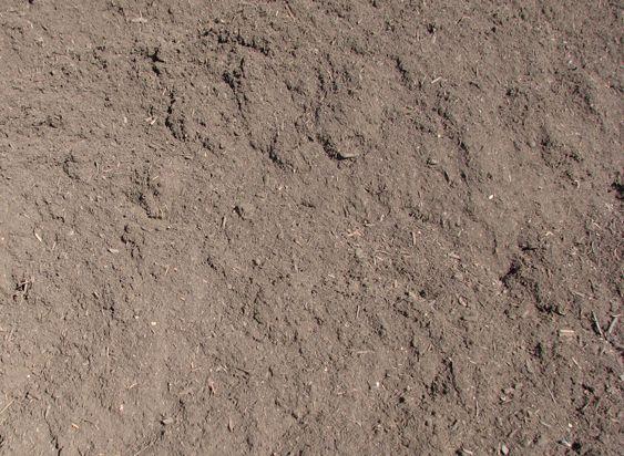 Soilworx online shop for Soil improver